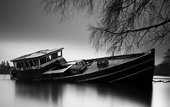 A Classic Black White Nature Photography