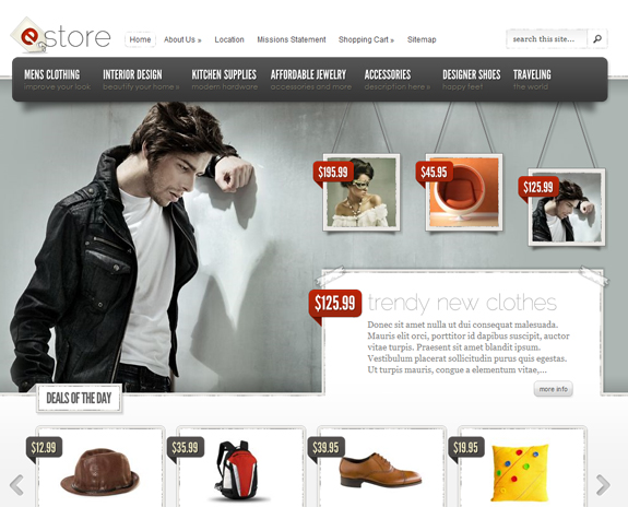 E-Store By Elegant Themes