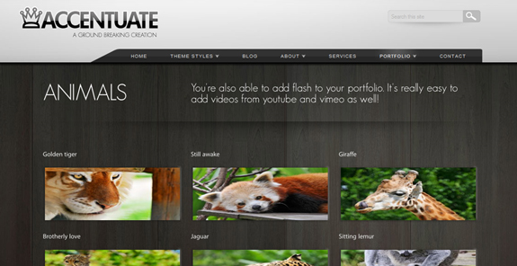 Accentuate, WordPress Gallery of Photography Themes