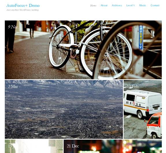AutoFocus, WordPress Gallery of Photography Themes