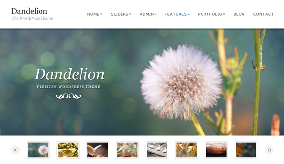 Dandelion, WordPress Gallery of Photography Themes