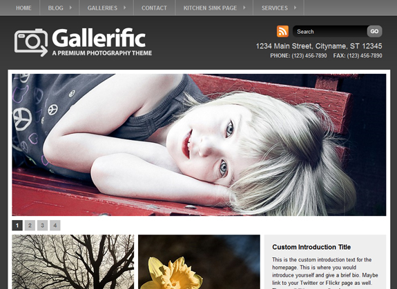 Gallerific, WordPress Gallery of Photography Themes