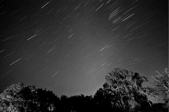 Leonid Meteor Shower Photo