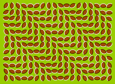 illusion 12 65 Amazing Optical Illusion Pictures