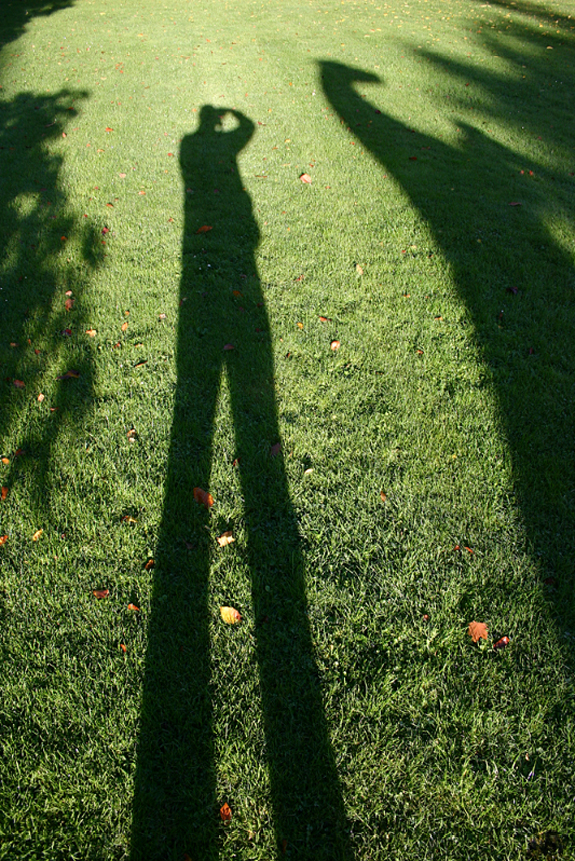Long Legs in Shadow