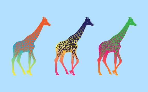 Giraffe Minimal Wallpaper