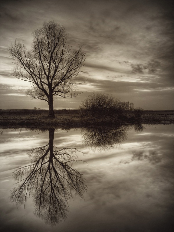Amazing Photos of Mirror and Reflection Photography 26