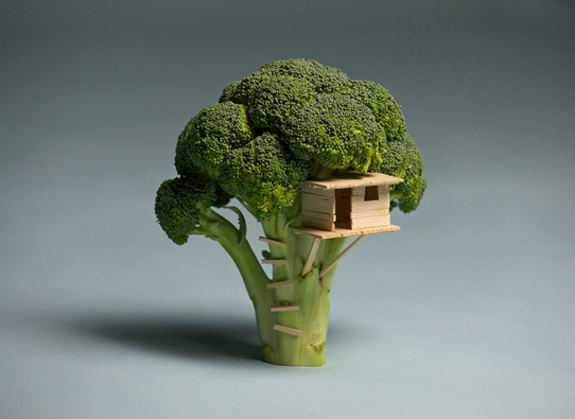 House on Tree - Random Picture