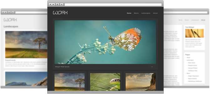 Wordpress Galleries Theme