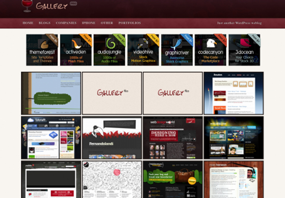Professional WordPress Gallery Theme