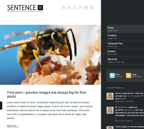 13 Sentence 20+ Responsive Magazine WordPress Themes
