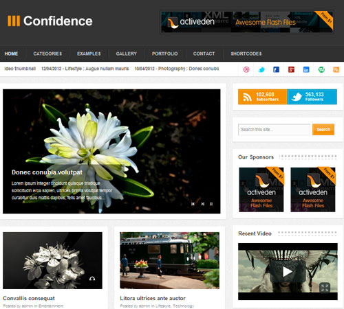 18 Confidence 20+ Responsive Magazine WordPress Themes