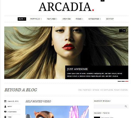 21 Arcadia 20+ Responsive Magazine WordPress Themes