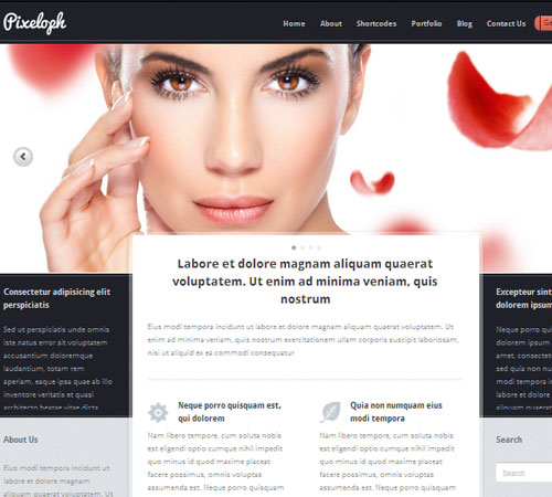24 Pixeloph 20+ Responsive Magazine WordPress Themes