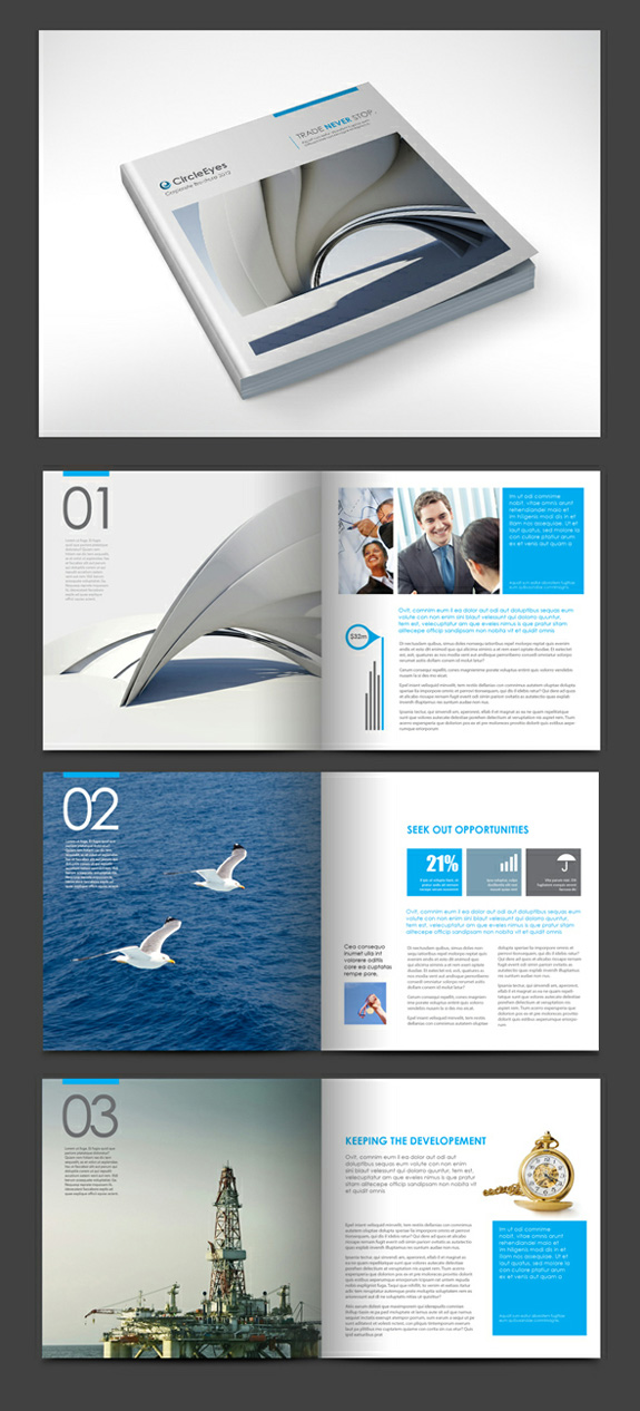 Interesting and Unusual Brochure Examples