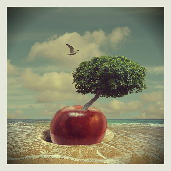 surreal-artwork-photo-manipulation-14