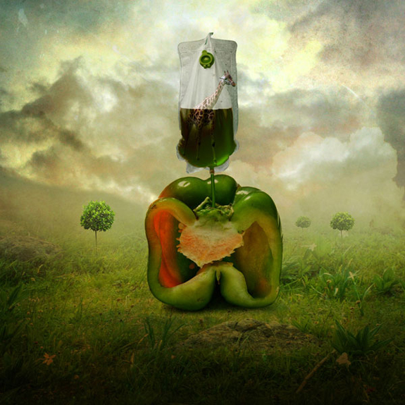 surreal-artwork-photo-manipulation-16