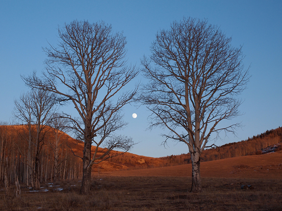 Moonrise, Colorado