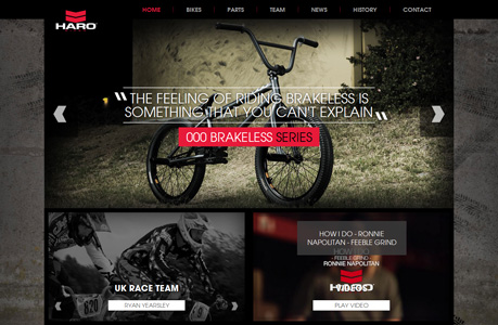 Biking Website