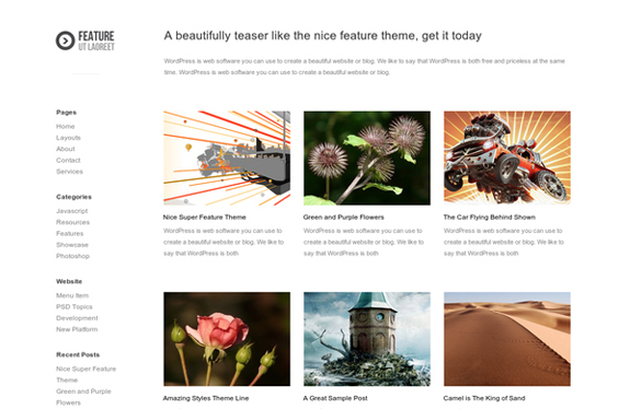 Feature - Free Blog WordPress Theme