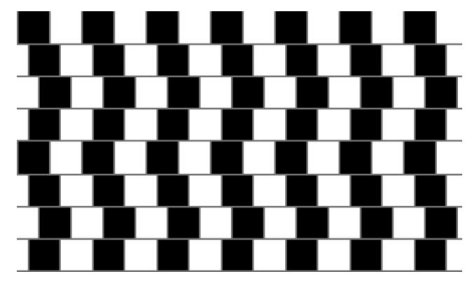 Optical Illusion Image