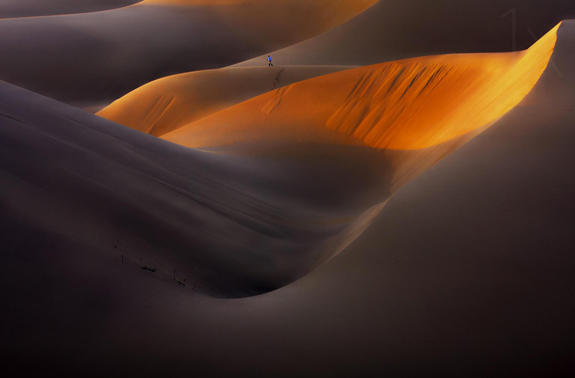 Amazing Desert Picture